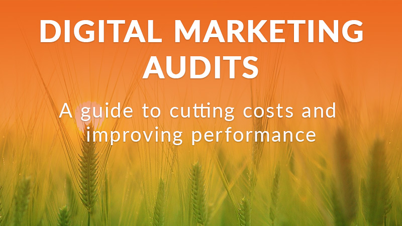 Digital marketing audits guide