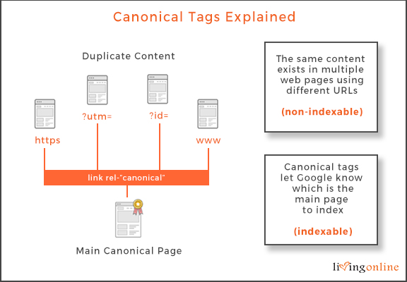 canonical tags explained