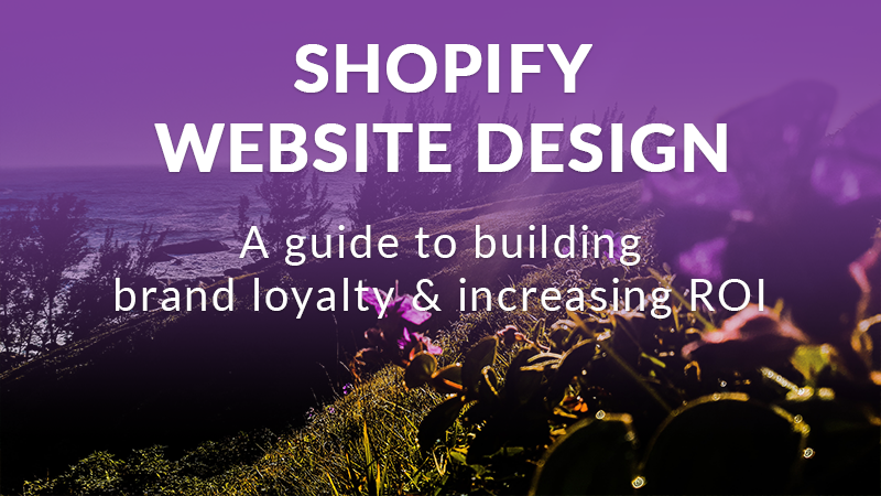 shopify website design header